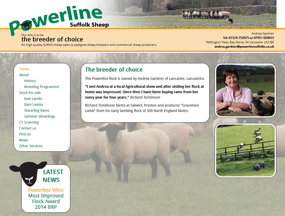 Powerline Suffolks - www.powerlinesuffolks.co.uk